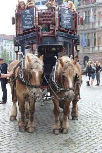 Antwerpen_2014-05-29_1548_1000732
