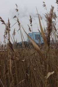 Im Hintergrund besagtes Kraftwerk