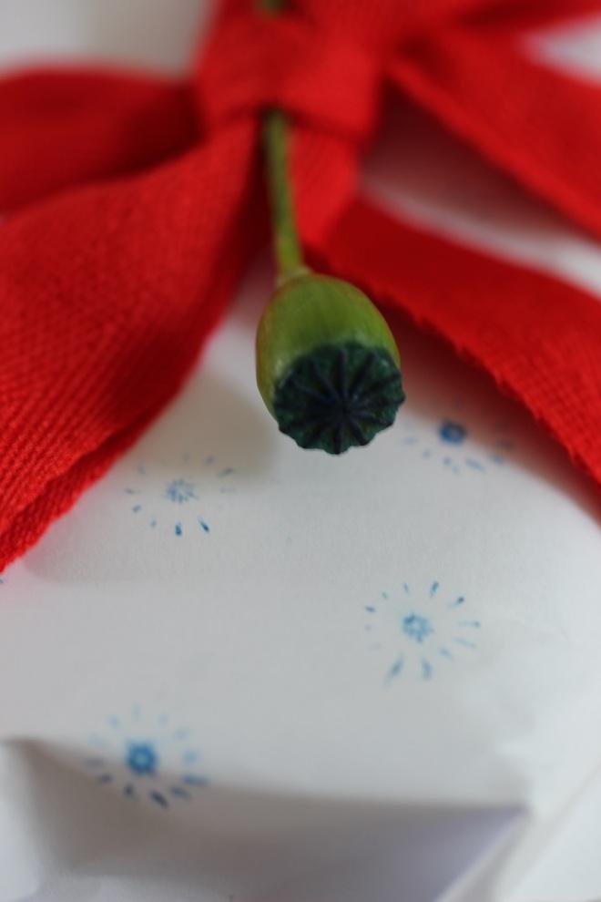 romikamasulzke-Blumen (13)