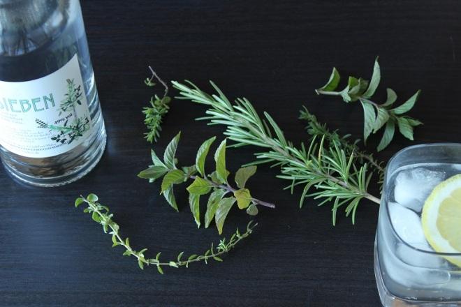 romikamasulzke-ginsieben (10)